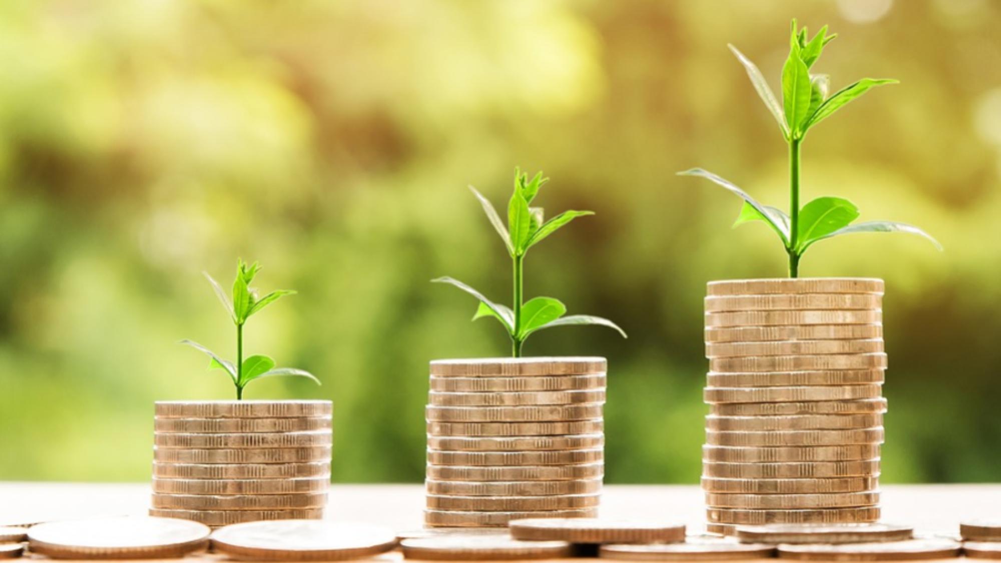 La contabilidad y el emprendedor: monedas y crecimiento